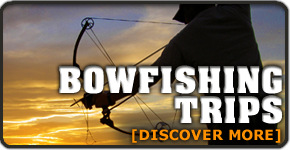 290x150bowfishing.png